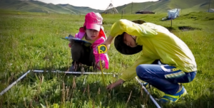 Children from the city and the local community are taking scientific measurements to better understand the grasslands.